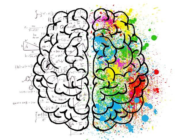 Obrázek mozku
