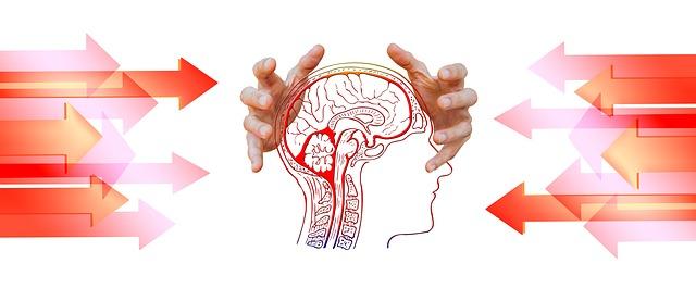 Mozek v rukou