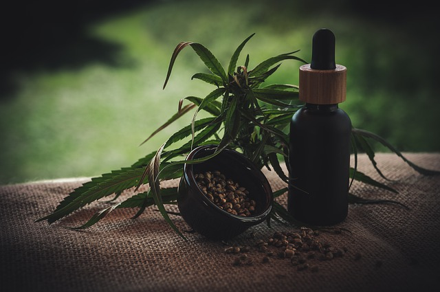 rostlina + tinktura + semínka